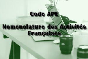 Code APE Nomenclature des activités françaises